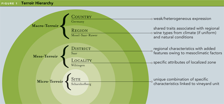 Terroir Hierarchy